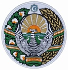 Crest of UZBEKISTAN Embroidered Sleeve Patch Coat of arms